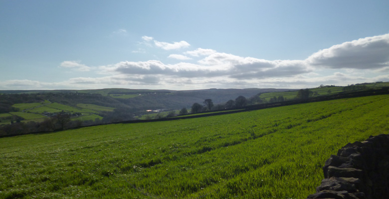 Stannington walk
